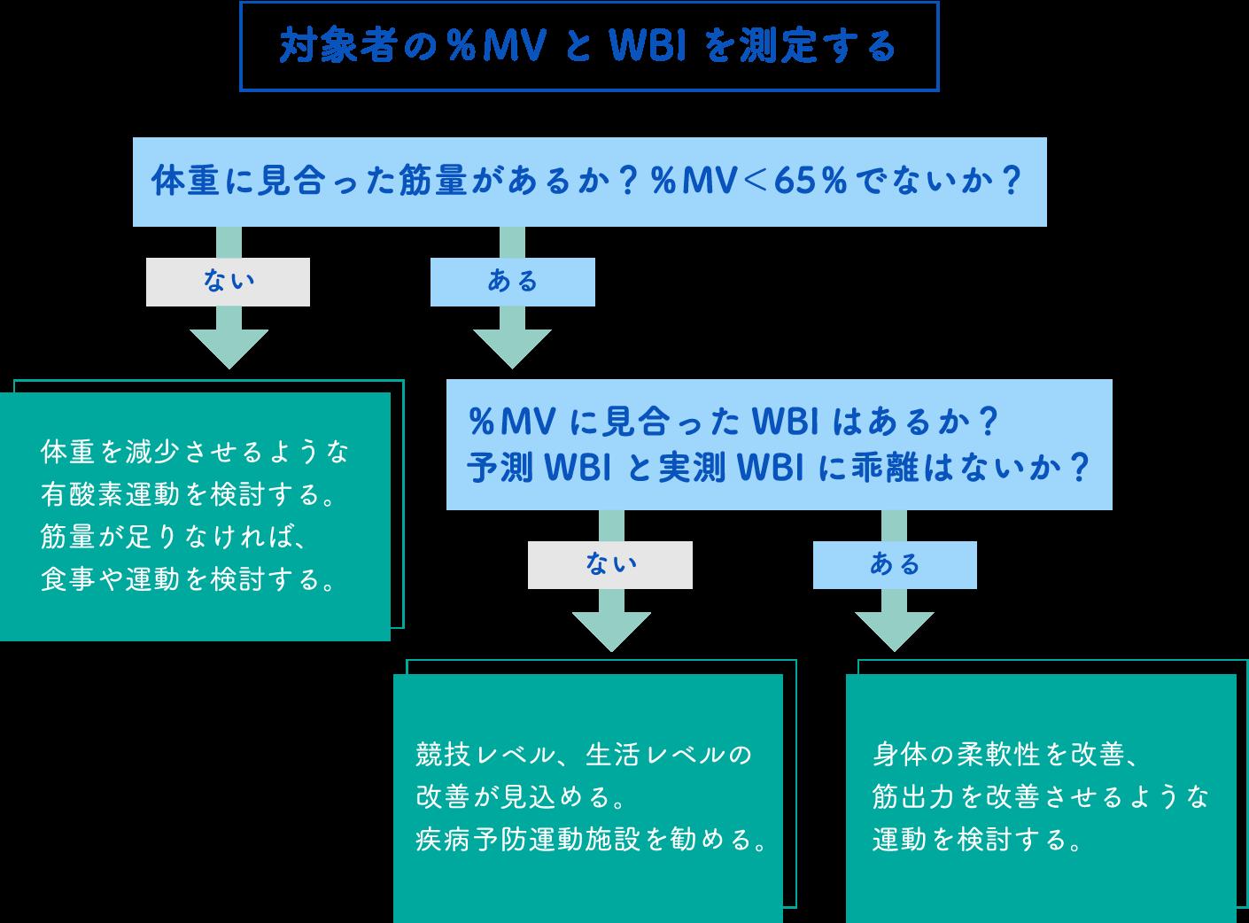 対象者の%MVとWBIを測定する
