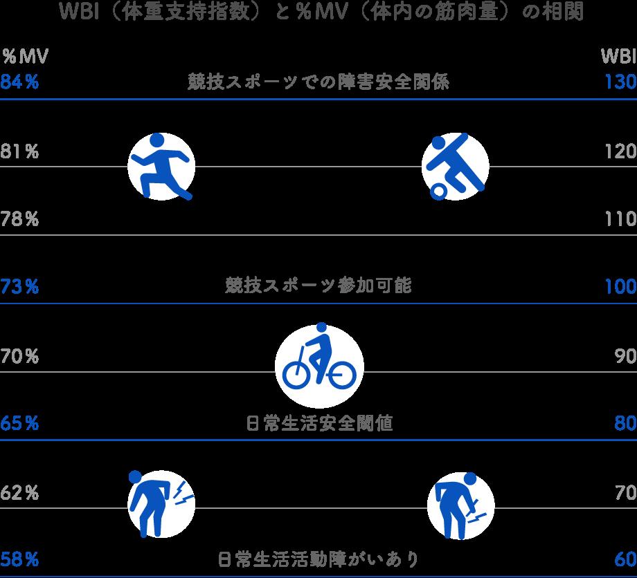 WBIと筋肉量(%MV)の相関