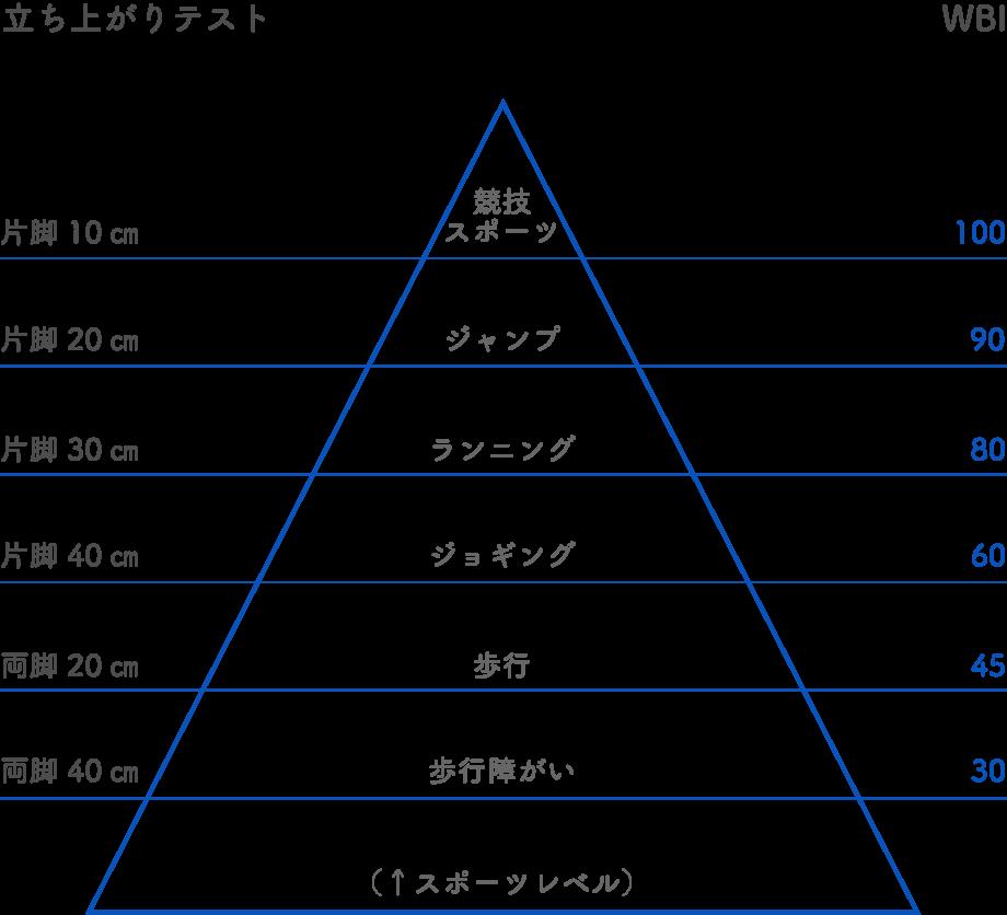 筋力測定と体重支持指数(WBI)の相関